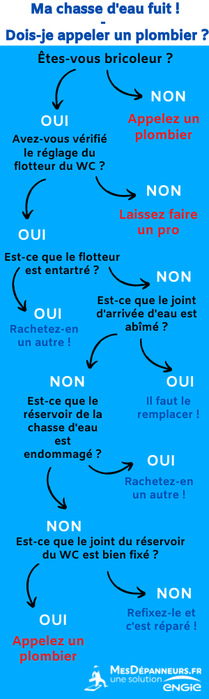 Infographie MD